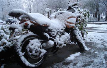 sneeuwhans-1
